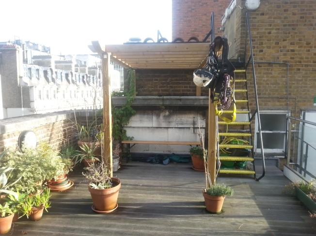 roof garden 1